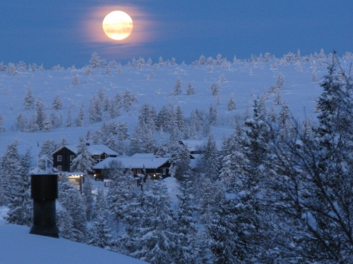 winter-fullmoon-in-early-morning