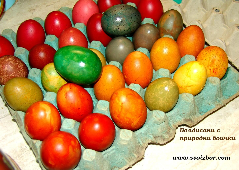 Боядисване на яйца с природни боички